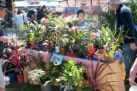 Goolwa Market