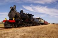 shr cockle train 09 300x201